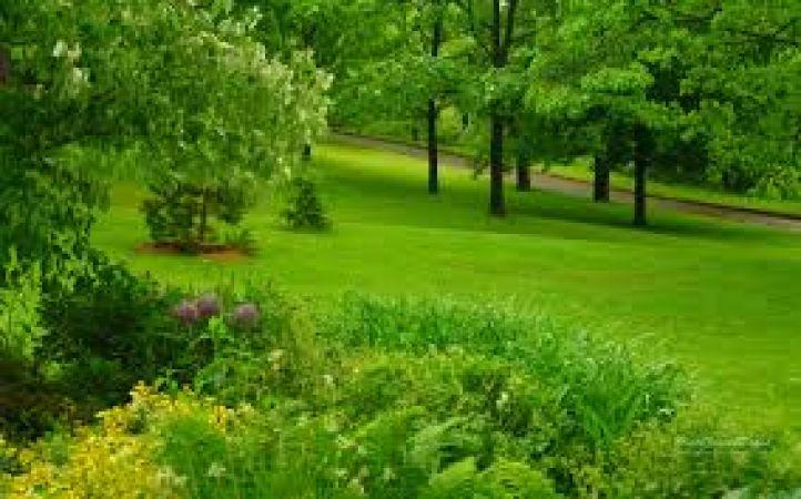 पर्यावरण के अनुकूल है जैविक खेती